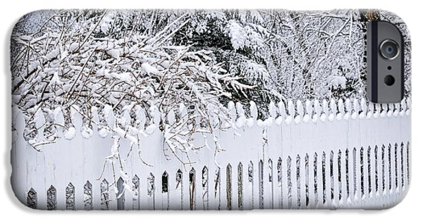 Park Scene iPhone Cases - White fence with winter trees iPhone Case by Elena Elisseeva