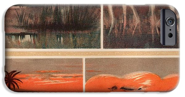 Abbott Handerson Thayer iPhone Cases - White Flamingoes Red Flamingoes and The Skies They Simulate  iPhone Case by Celestial Images