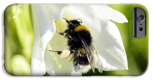 Close Up Floral Mixed Media iPhone Cases - White Flower And Bumblebee iPhone Case by Toppart Sweden