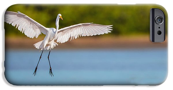 Wildlife iPhone Cases - White Heron Landing Graciously iPhone Case by Andres Leon