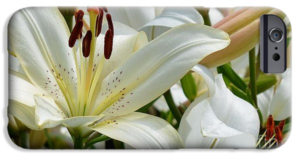 Asiatic Lily iPhone Cases - White Lilies iPhone Case by Fiona Craig