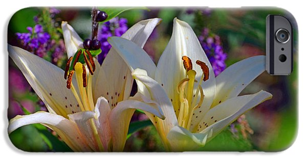 The White House Photographs iPhone Cases - White Lilies in the Shade iPhone Case by Chris Tennis