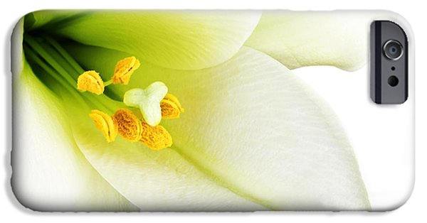 Freshness iPhone Cases - White lilly macro iPhone Case by Johan Swanepoel