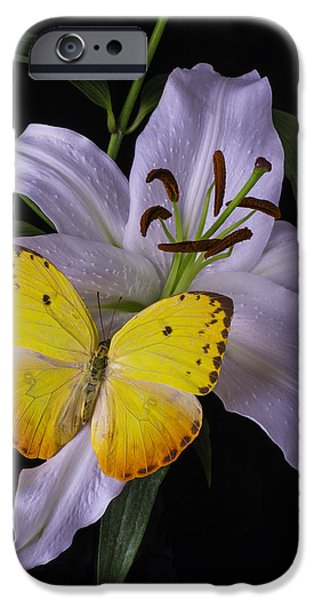 White Tiger iPhone Cases - White Lily With Yellow Butterfly iPhone Case by Garry Gay