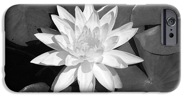White Flowers Paintings iPhone Cases - White Lotus 2 iPhone Case by Ellen Henneke