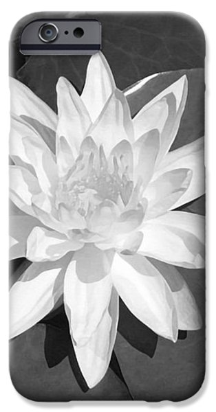 White Lotus 2 iPhone Case by Ellen Henneke