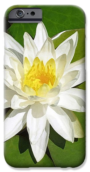 White Lotus iPhone Case by Ellen Henneke