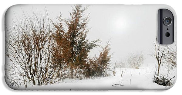 Trees In Snow iPhone Cases - White Magic iPhone Case by Diana Angstadt