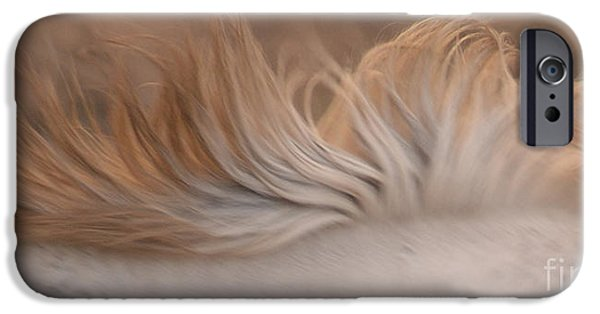 Gray Hair iPhone Cases - White Mare Mane Number One Close Up Panoramic Muted iPhone Case by Heather Kirk