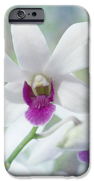 White Orchid iPhone Case by Kim Hojnacki