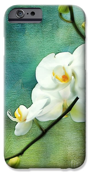 Exoticism iPhone Cases - White Orchids iPhone Case by Darren Fisher
