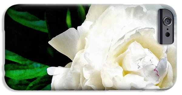 Drama iPhone Cases - White Peony iPhone Case by Michelle Calkins