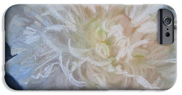Blossom Pastels iPhone Cases - White Peony iPhone Case by Sandra Strohschein