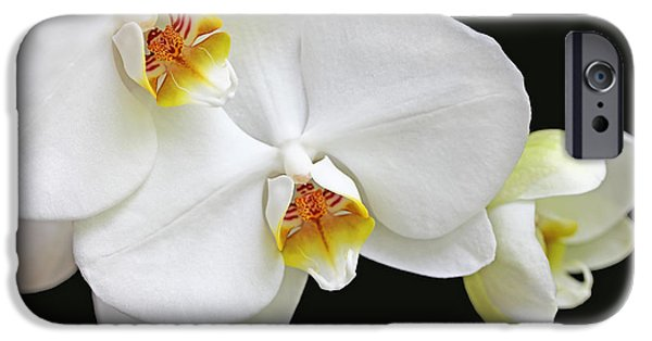 White Orchid iPhone Cases - White Phalaenopsis Orchid Flowers iPhone Case by Jennie Marie Schell