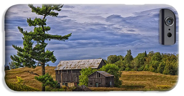 Shed iPhone Cases - White Pine and Old Barn iPhone Case by Gary Hall