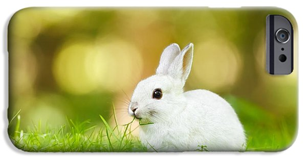 Afternoon iPhone Cases - White Rabbit iPhone Case by Roeselien Raimond