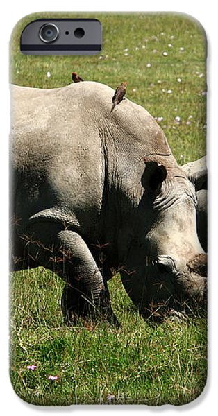 White Rhinoceros iPhone Case by Aidan Moran
