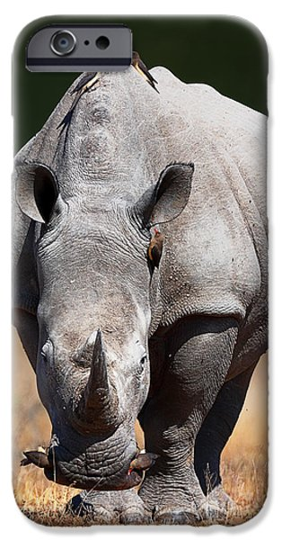 Safari iPhone Cases - White Rhinoceros  front view iPhone Case by Johan Swanepoel