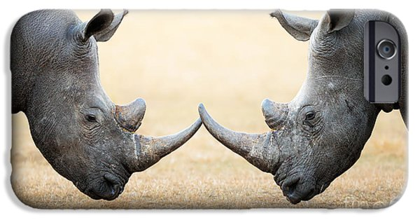 Shoulders iPhone Cases - White Rhinoceros  head to head iPhone Case by Johan Swanepoel
