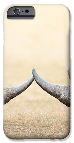 White Rhinoceros  head to head iPhone Case by Johan Swanepoel