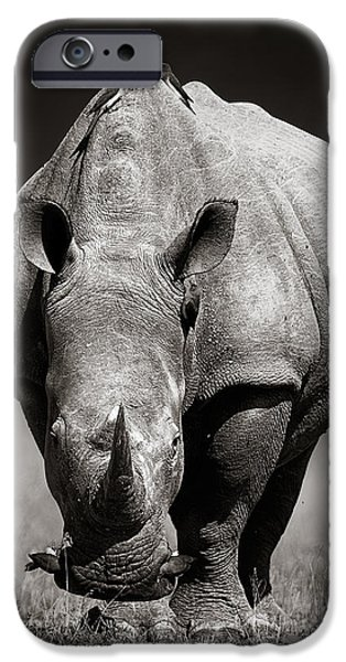 Rhino iPhone Cases - White Rhinoceros  in due-tone iPhone Case by Johan Swanepoel