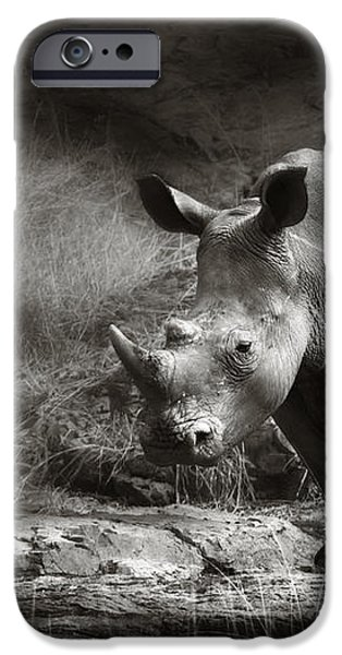 White Rhinoceros iPhone Case by Johan Swanepoel