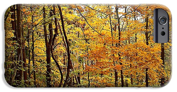 Autumn Landscape Jewelry iPhone Cases - White River Trail iPhone Case by BackHome Images