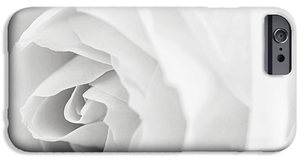 Femininity iPhone Cases - White rose iPhone Case by Elena Elisseeva