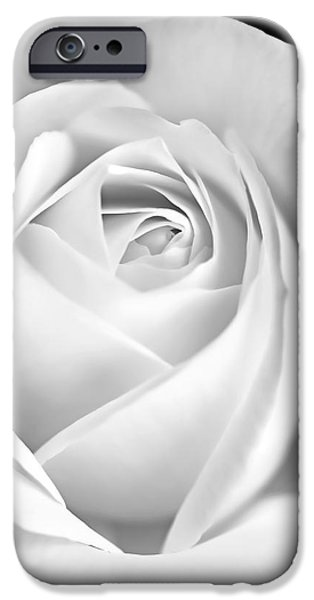 Recently Sold -  - Floral Photographs iPhone Cases - White Rose in Black and White iPhone Case by Jennie Marie Schell