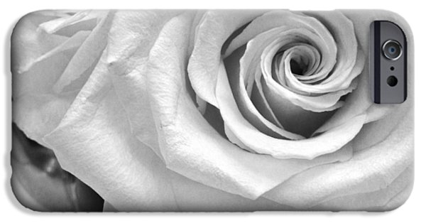 Patrick iPhone Cases - White Rose iPhone Case by Patrick