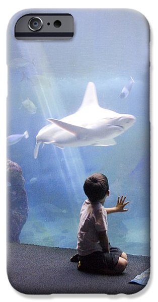 Shark iPhone Cases - White Shark and Young Boy iPhone Case by David Smith