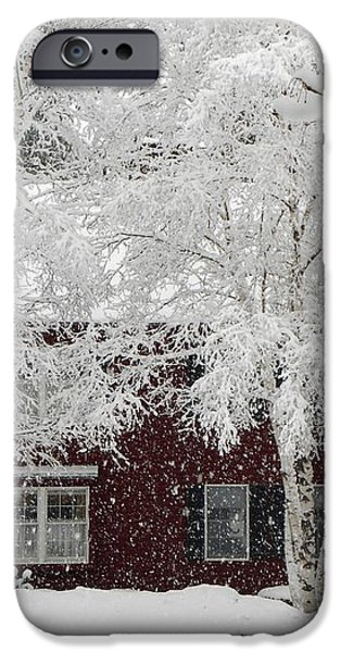 White Snow Covered Birches iPhone Case by Patricia Sundik