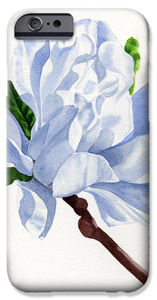 White Flowers Paintings iPhone Cases - White Star Magnolia Blossom with White Background iPhone Case by Sharon Freeman