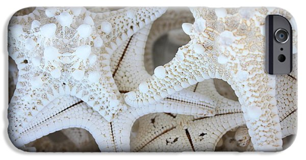 Beach Art iPhone Cases - White Starfish iPhone Case by Carol Groenen