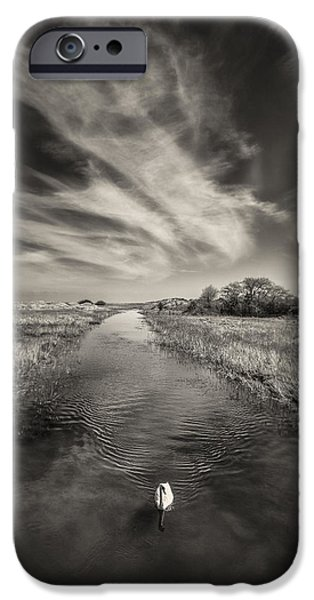 White River iPhone Cases - White Swan iPhone Case by Dave Bowman