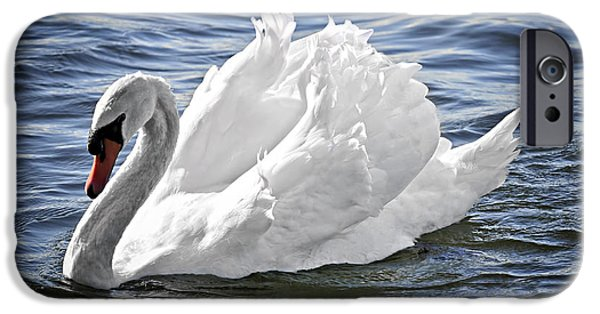 Swan iPhone Cases - White swan on water iPhone Case by Elena Elisseeva