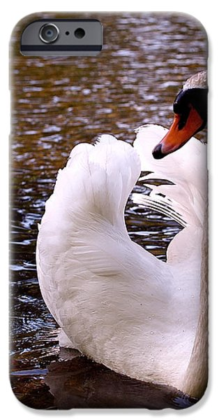 White Swan iPhone Case by Rona Black