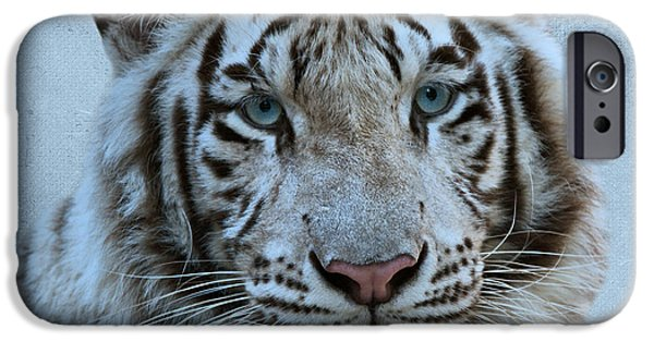 Indiana Photography iPhone Cases - White Tiger iPhone Case by Sandy Keeton