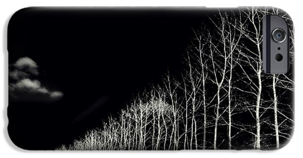 Autumn iPhone Cases - White Trees iPhone Case by Stylianos Kleanthous