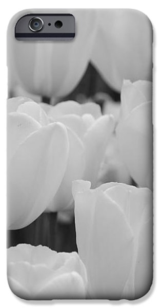 white tulips b/w iPhone Case by Jennifer Lyon