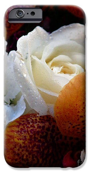Michael Mixed Media iPhone Cases - White Water Rose iPhone Case by M and L Creations