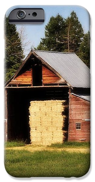 Whitefish Barn iPhone Case by Marty Koch