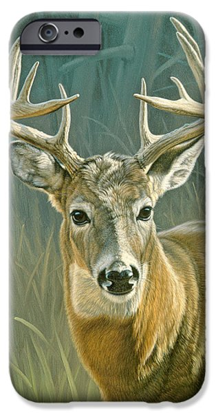 Whitetail Deer iPhone Cases - Whitetail Buck iPhone Case by Paul Krapf