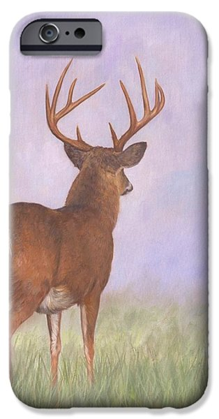 Whitetail iPhone Case by David Stribbling