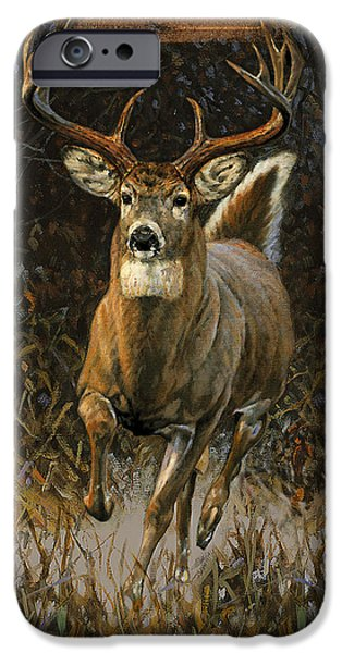 Jq Licensing iPhone Cases - Whitetail Deer iPhone Case by JQ Licensing