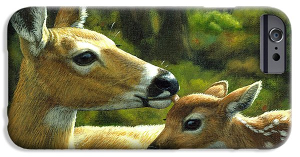 Whitetail Deer iPhone Cases - Whitetail Deer - First Spring - Closeup iPhone Case by Crista Forest