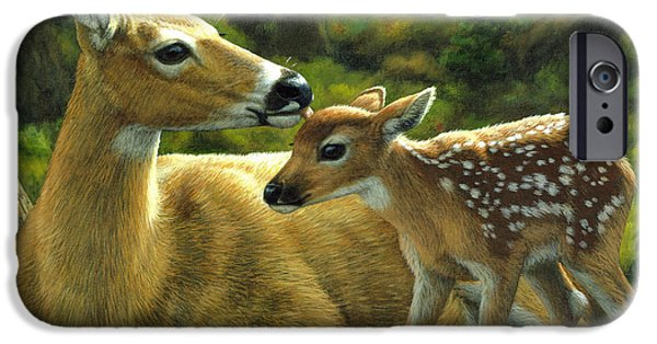 Whitetail Deer iPhone Cases - Whitetail Deer - First Spring - Square iPhone Case by Crista Forest