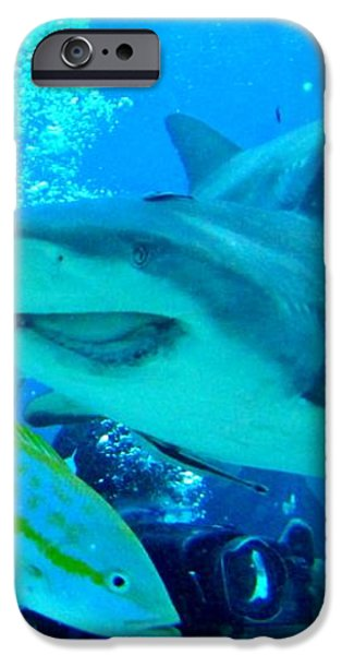 Who Said Sharks Were Mean iPhone Case by John Malone
