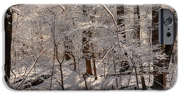Snowy Day iPhone Cases - Whose Woods These Are? iPhone Case by Lydia Holly