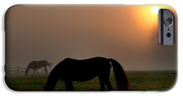 Recently Sold -  - Fog Mist iPhone Cases - Widener Horse Farm at Sunrise iPhone Case by Bill Cannon